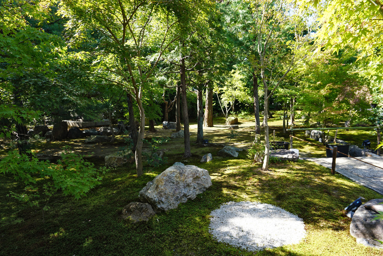 勝林寺 庭