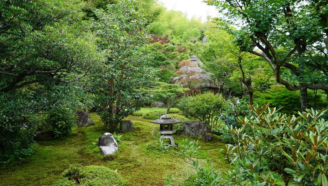鈴虫寺庭園