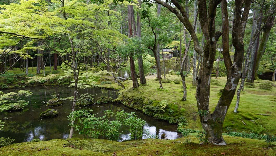 西芳寺 最初の池1