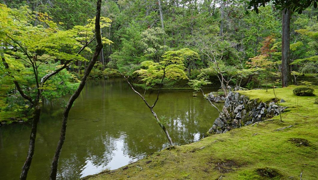 朝日ケ島を望む