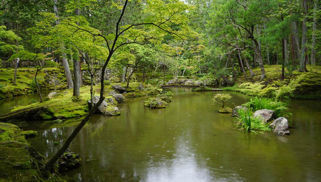 夕日ケ島あたりの池