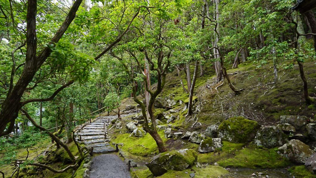西芳寺 上段の道