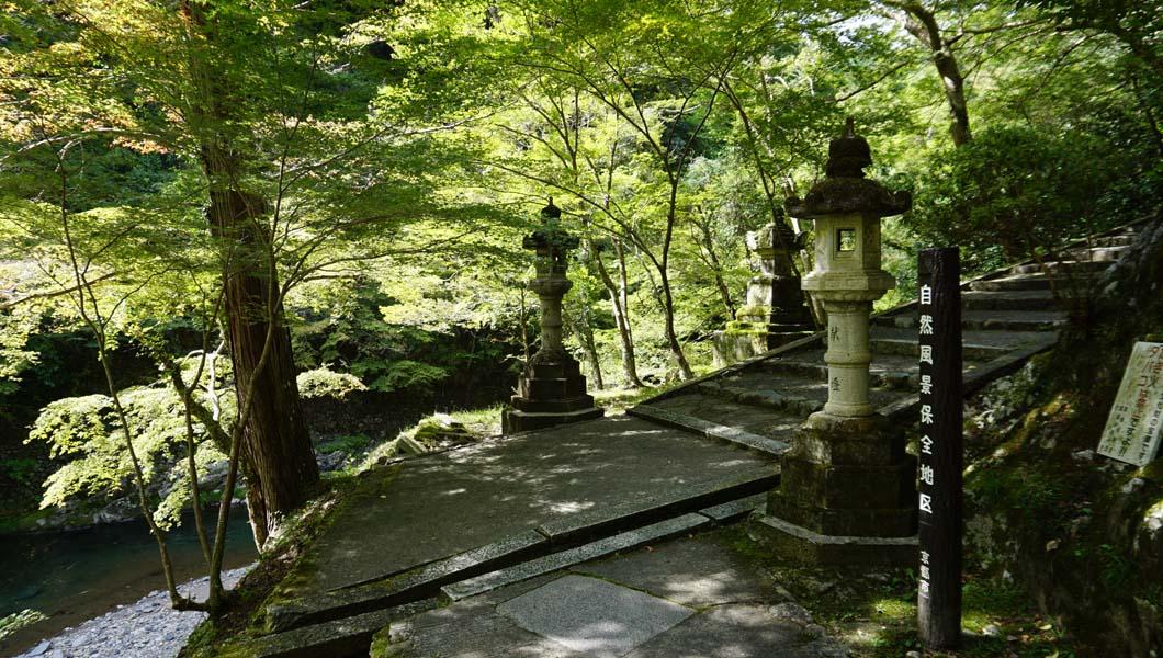西明寺への階段01