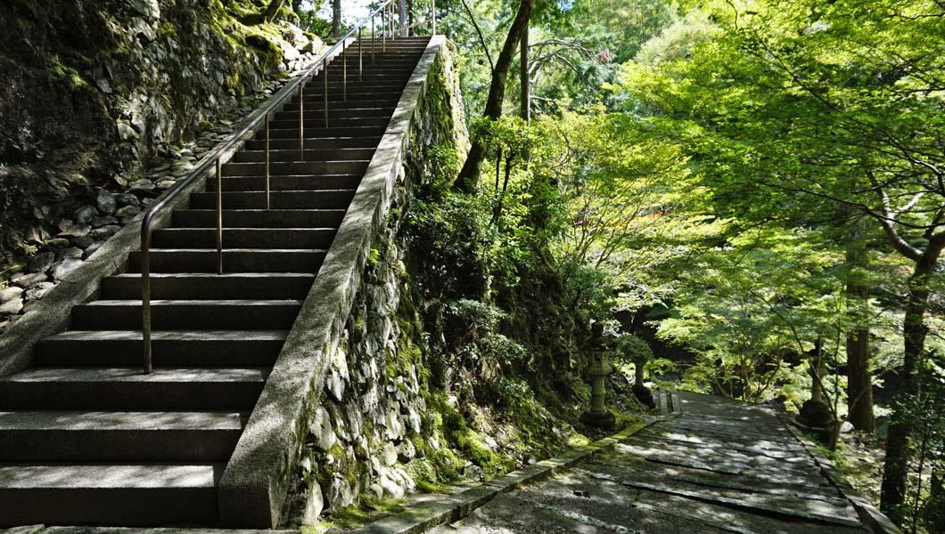 西明寺への階段02