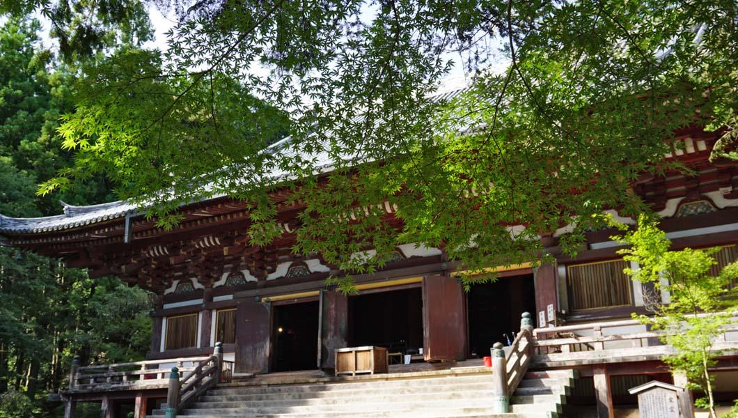 神護寺 金堂と青紅葉