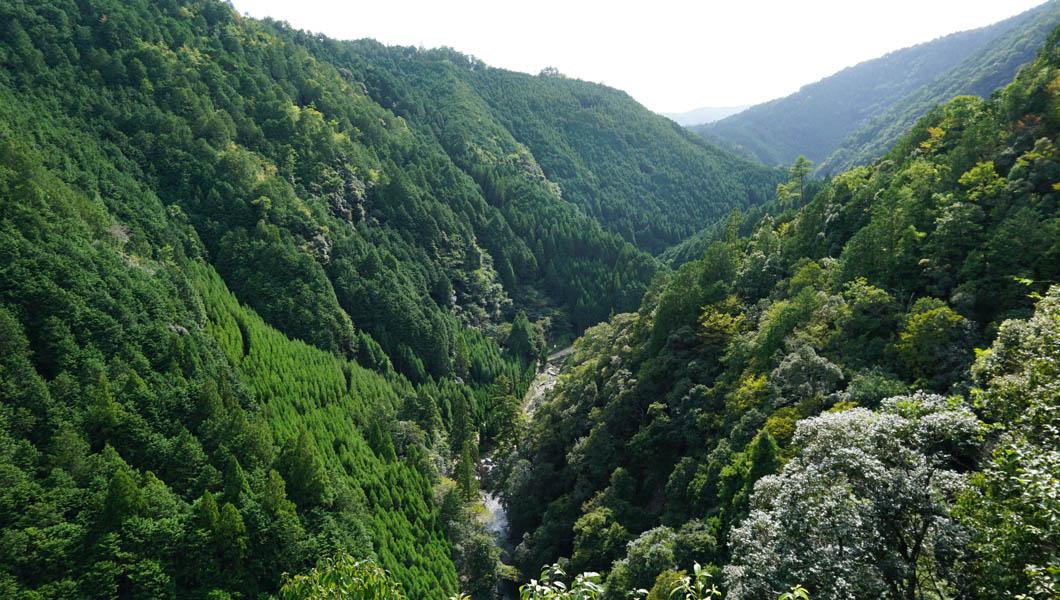 高雄山からの風景