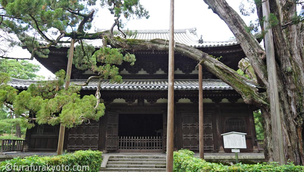 大徳寺 仏殿