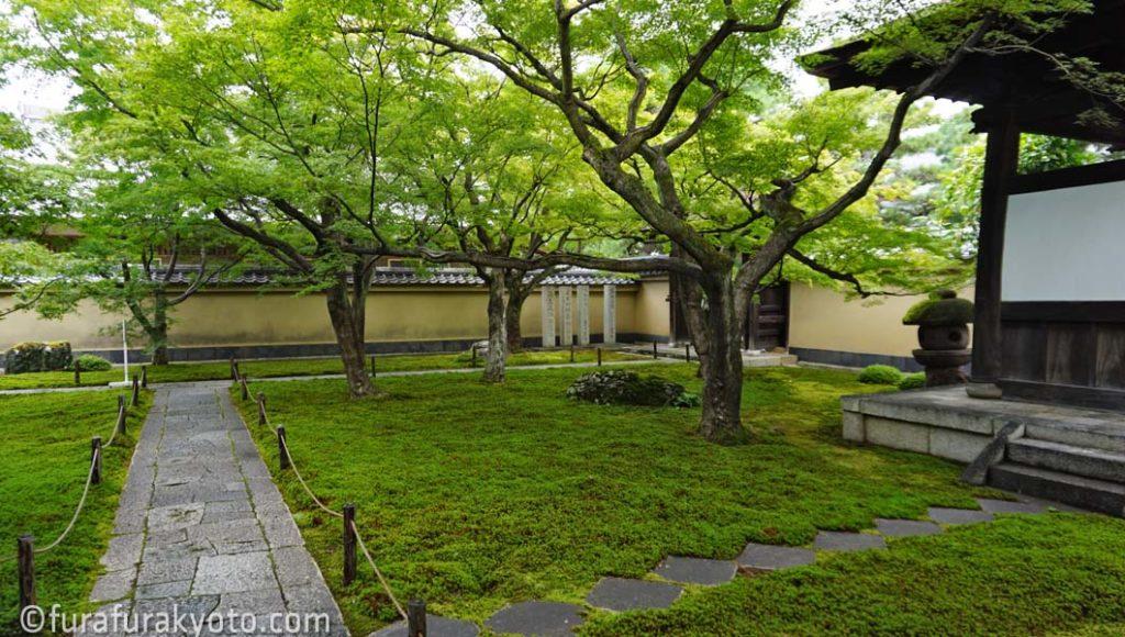 黄梅院 玄関の庭